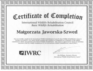 certyfikat IWRC