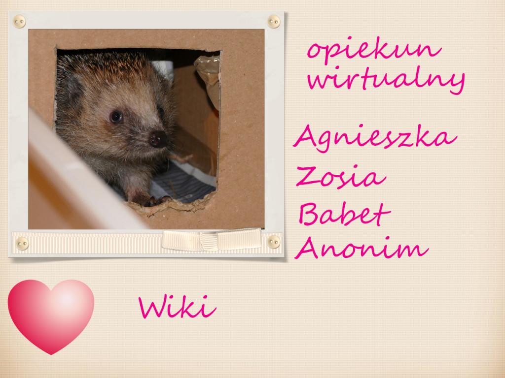Wiki adoptowana